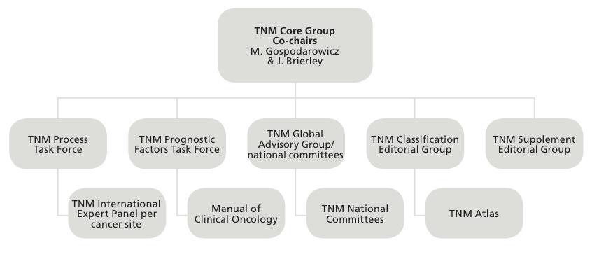 TNM Global Advisory Group diagram.jpg